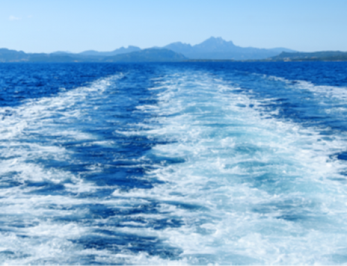 The Cruise Affair – Discover The Best of Cruising
